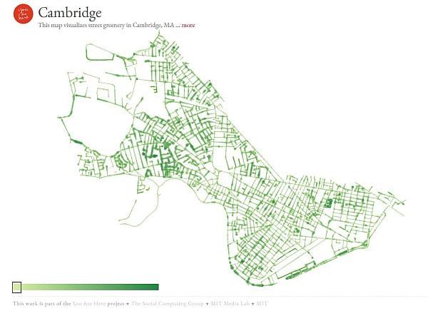 樹木が多い通りを可視化したケンブリッジ市の地図 (出典:You Are Here)