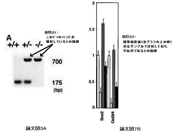 山中教授の論文「内容は正しい」「原データ見つからず」、京大が Web で報告
