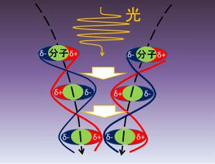 産総研、分子/原子間で働く弱い凝集力を光の照射で増強、有機デバイス材料などへの応用に期待