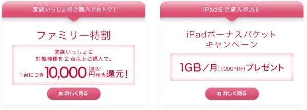 iPad 向けキャンペーン (出典:NTT ドコモ)