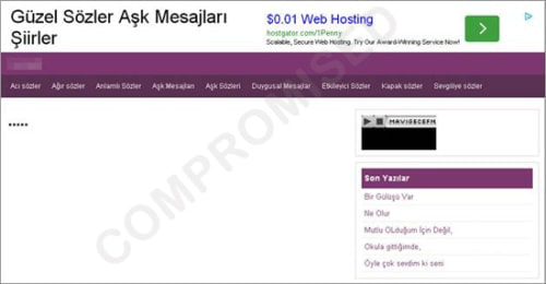 トルコ語の Web サイト