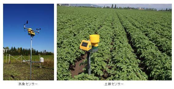 化学薬品を40%削減--NEC、ルーマニアで農業 ICT の実証実験