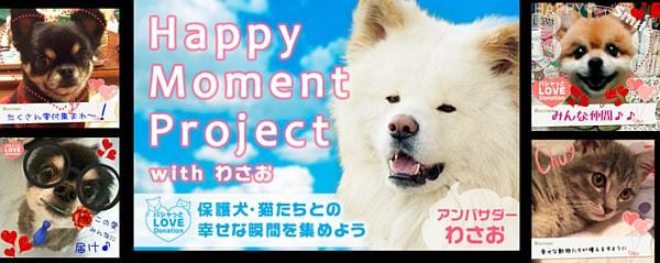 ペット写真共有 SNS「パシャっと my ペット」が「保護犬&保護猫」への寄付企画を実施