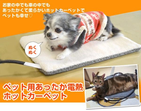 寒がりの犬や猫にぴったりの「ペット用ホットカーペット」、最高温度30℃で安心