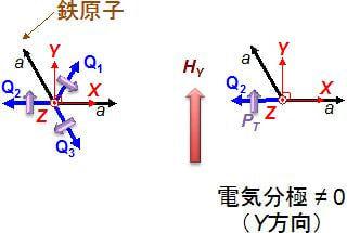 ビスマスフェライトの結晶における分極配向の模式図