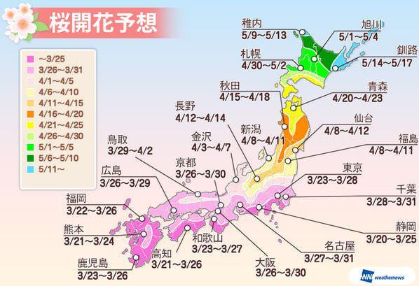 ウェザーニューズによる桜の開花予想、全国的に例年並みかやや遅め