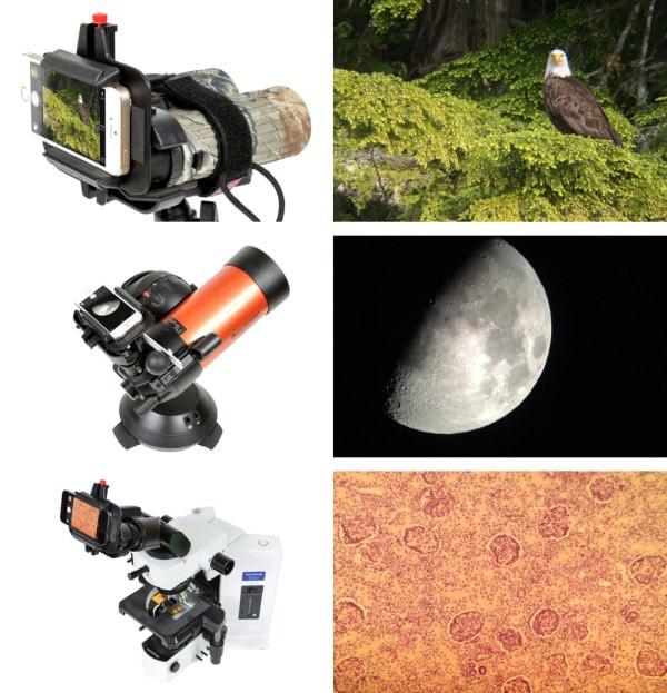月から微生物まで
