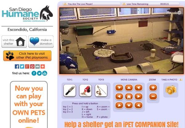 実際に iPetCompanion で遊べる施設 San Diego Humane Society (出典:iPet Companion)