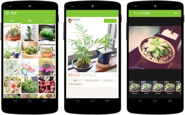 サボテンでソーシャルネットワーク、植物写真共有サービスが Android 版アプリを