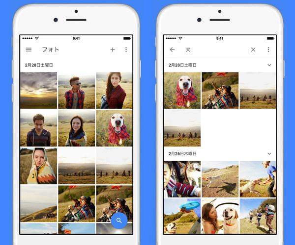 色んな写真を保存して(左)、犬の写真だけをすぐ見つけ出せる(右)