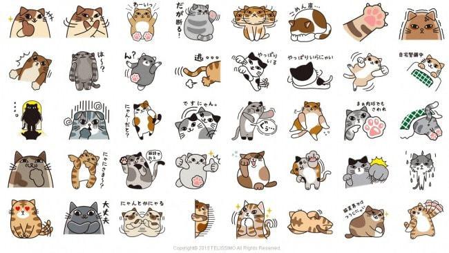 表情豊かな猫が40種類