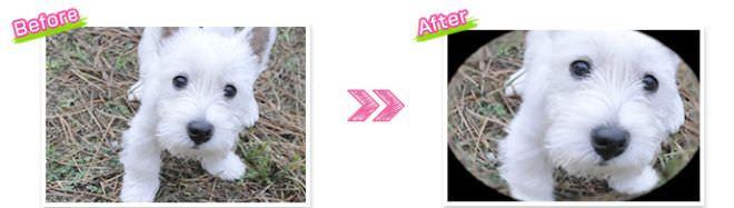 通常の撮影(画像左) 魚眼レンズを使用した撮影(画像左)