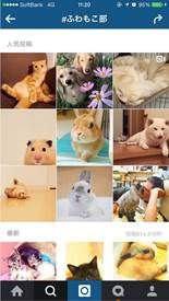 共有される様々な写真