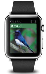 Apple Watchで野鳥を観察―「山溪ハンディ図鑑 日本の野鳥」がApple Watchに対応