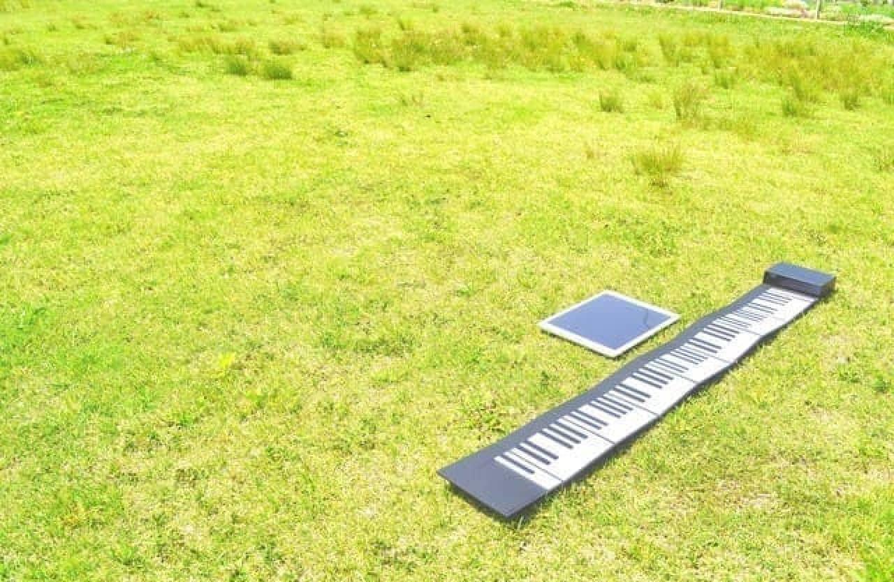 野原に置いた大人の紙鍵盤