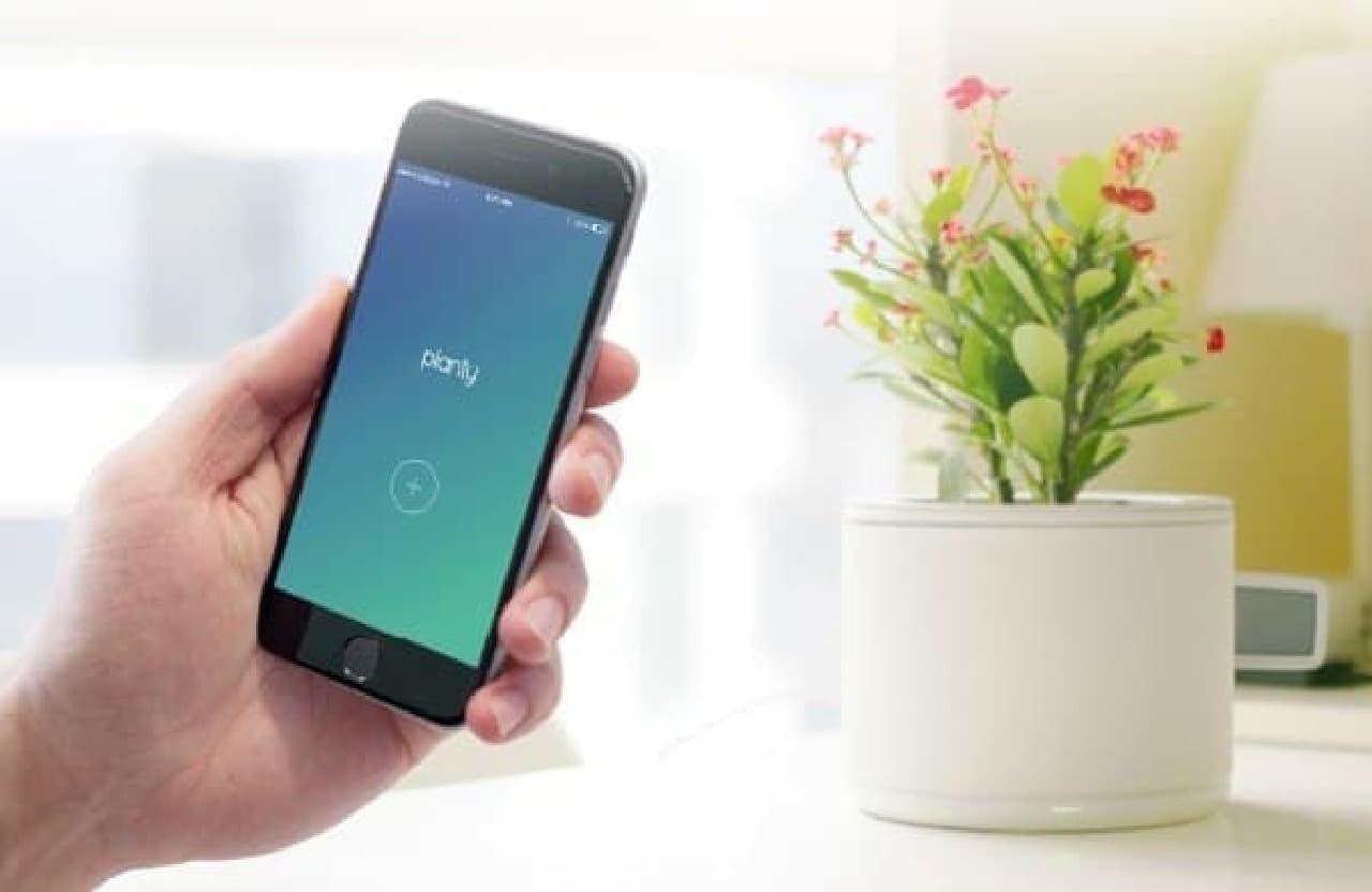 黒いスマートフォンと白い植木鉢