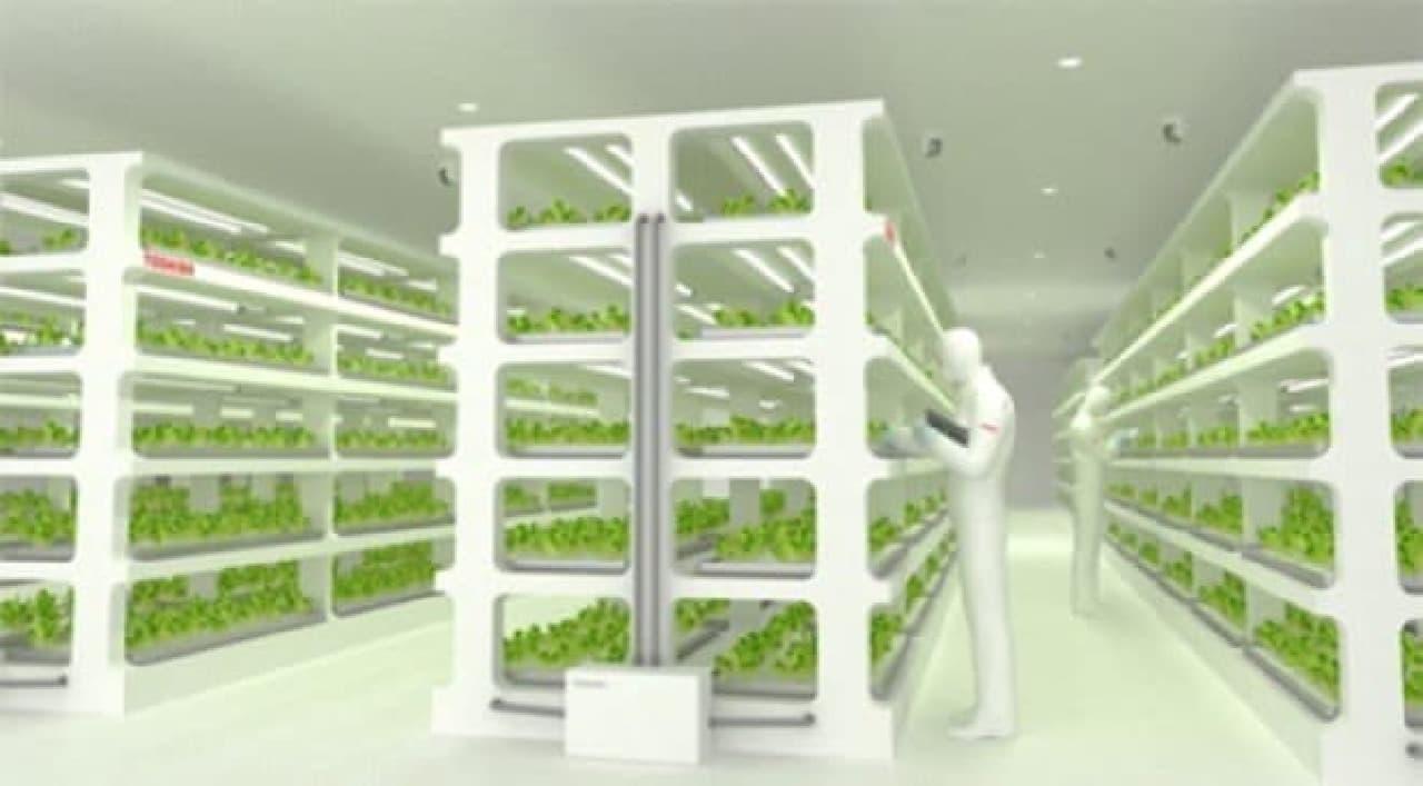 東芝の植物工場イメージ