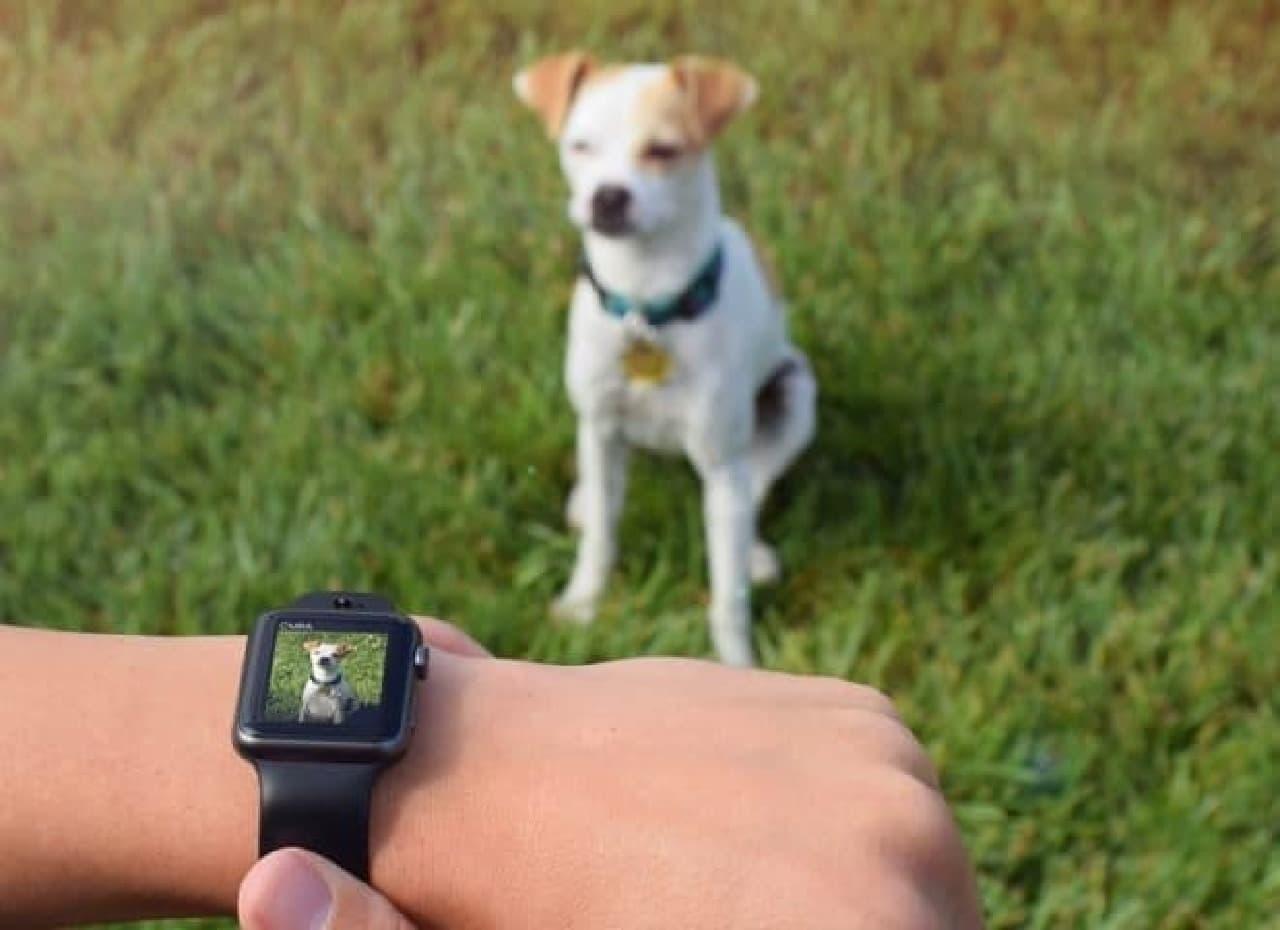 Apple Watchにカメラ機能を追加するバンド「CMRA」