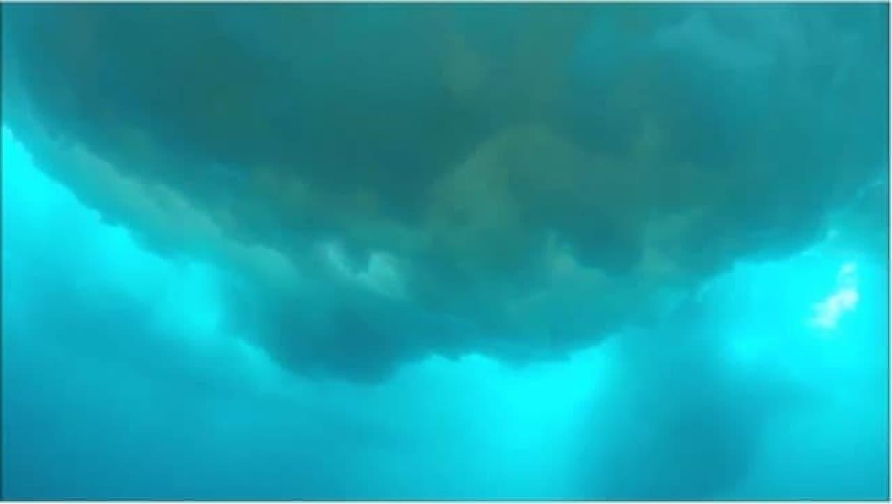 海氷の下の光景その2