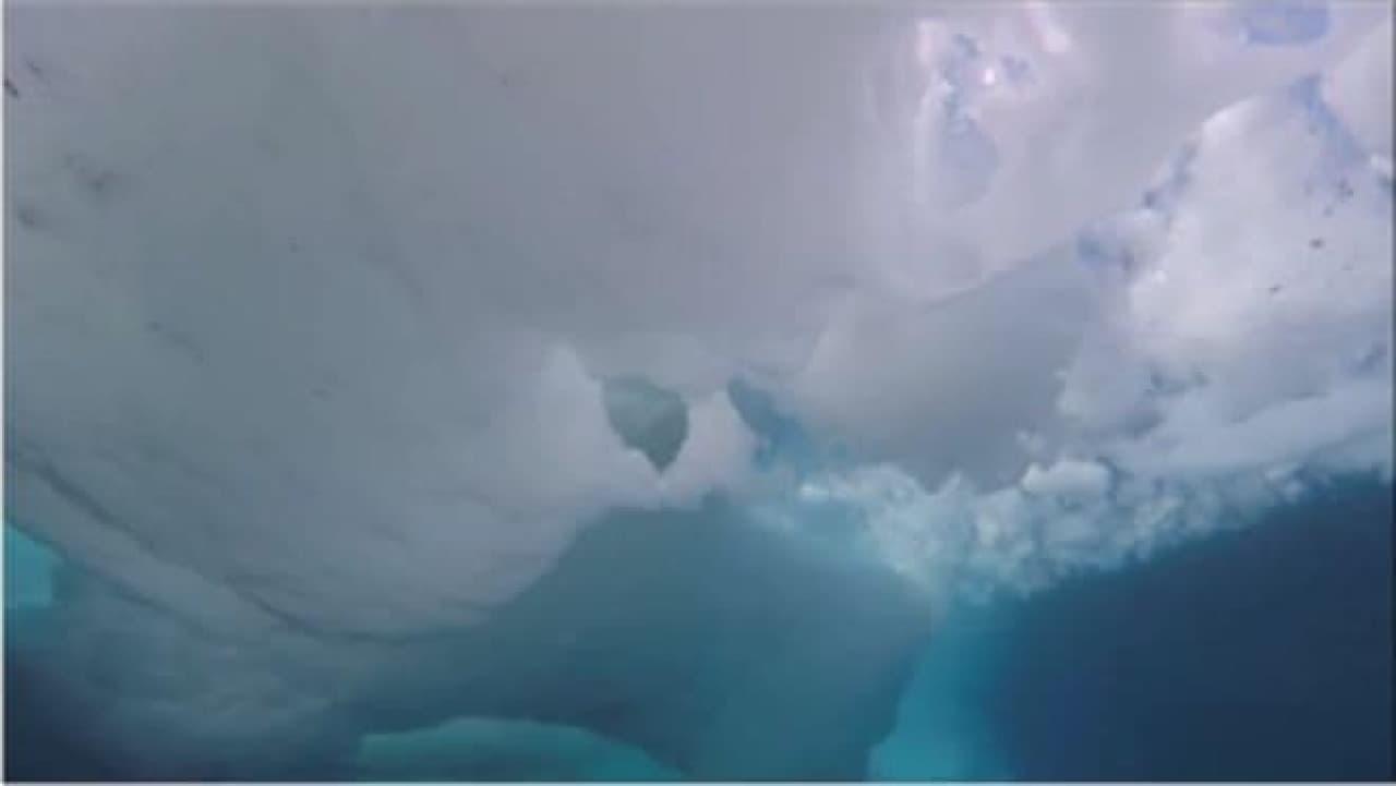 海氷の下の光景その3
