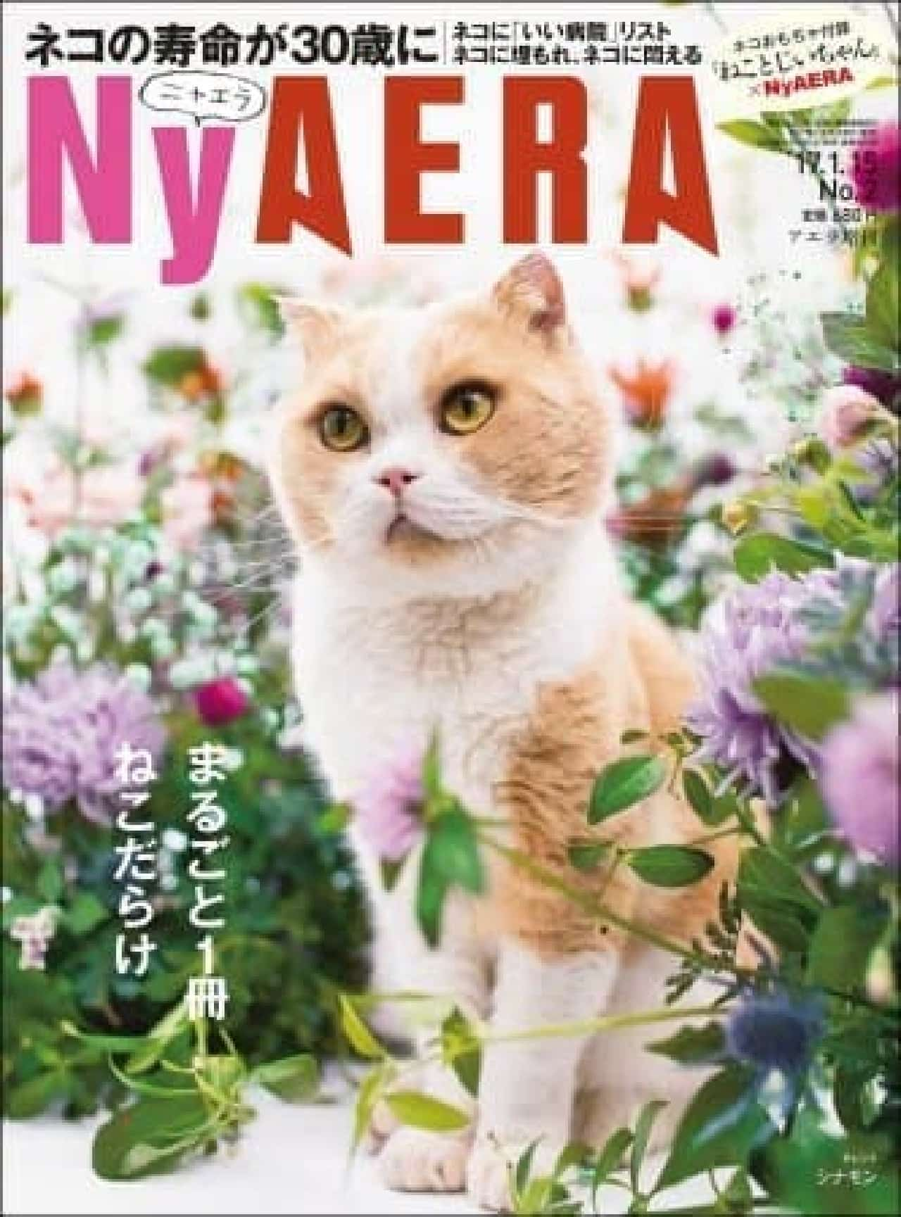 「AERA」がネコまみれ!…編集部総力取材で届ける「NyAERA(ニャエラ)」、大晦日に発売