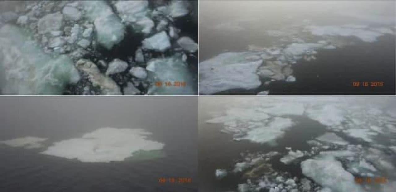 ラプテフ海の氷の写真