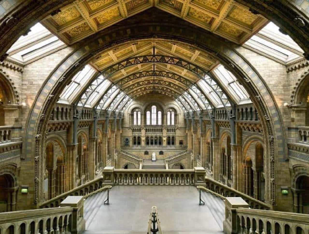 大英自然史博物館