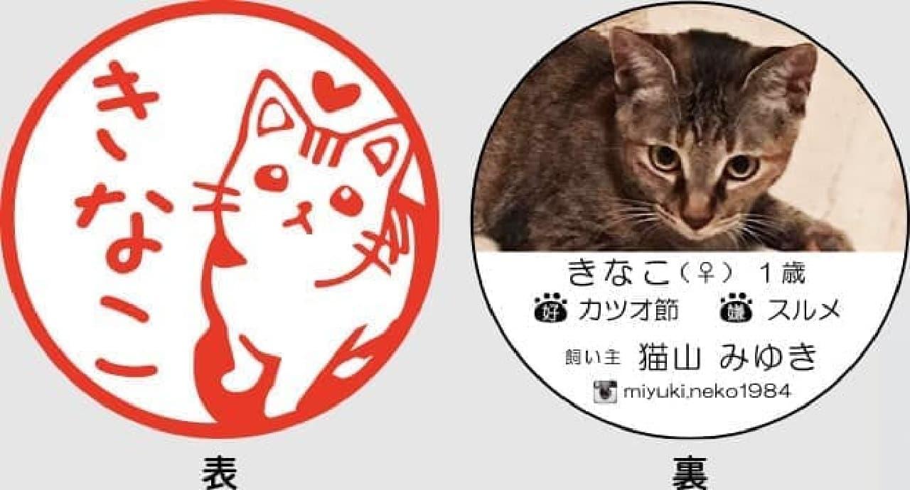ネコ好きをアピールできる名刺「ねこずかん ねこめいし」