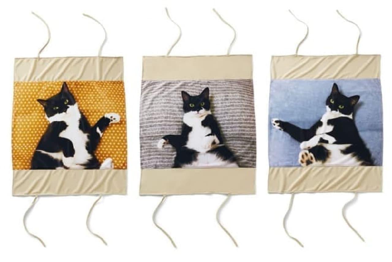 「添い寝待ち猫 ギズモさんまくらカバー」、フェリシモ猫部から