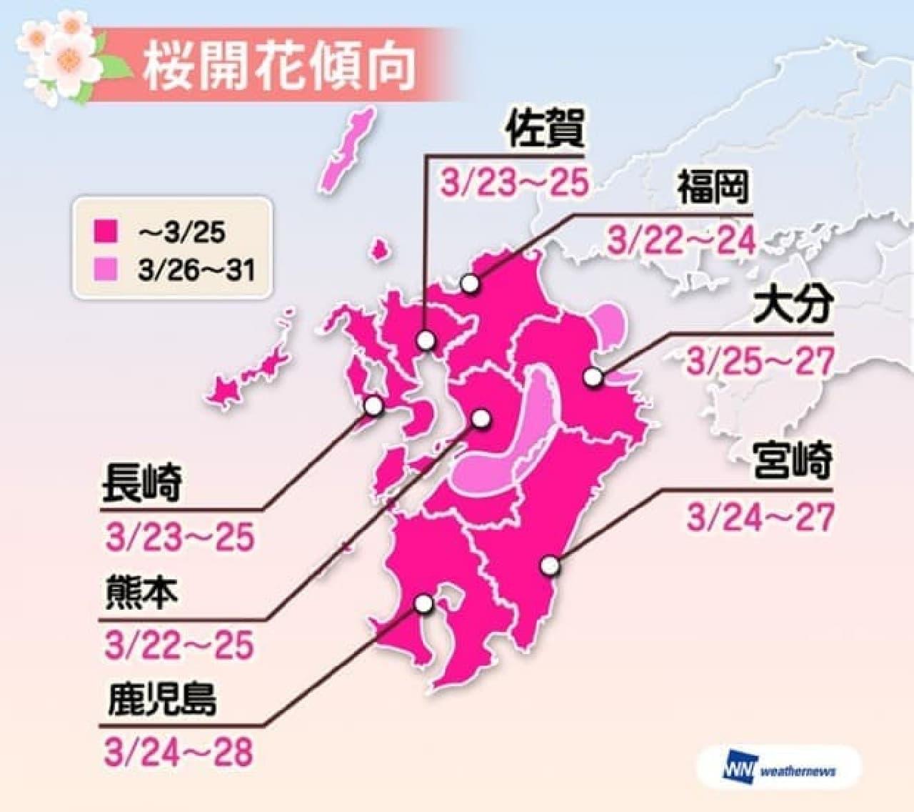 ウェザーニューズが2017年桜開花傾向を発表