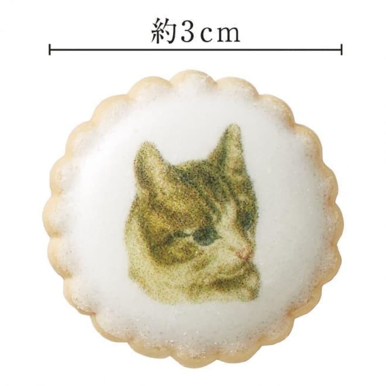 「猫のアンティークイラストビスケット」、フェリシモ猫部から