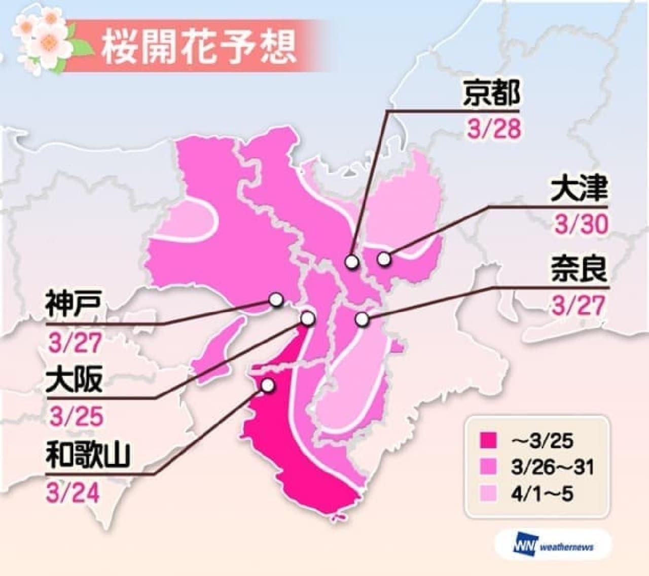 ウェザーニューズが「第二回桜開花予想」を公表