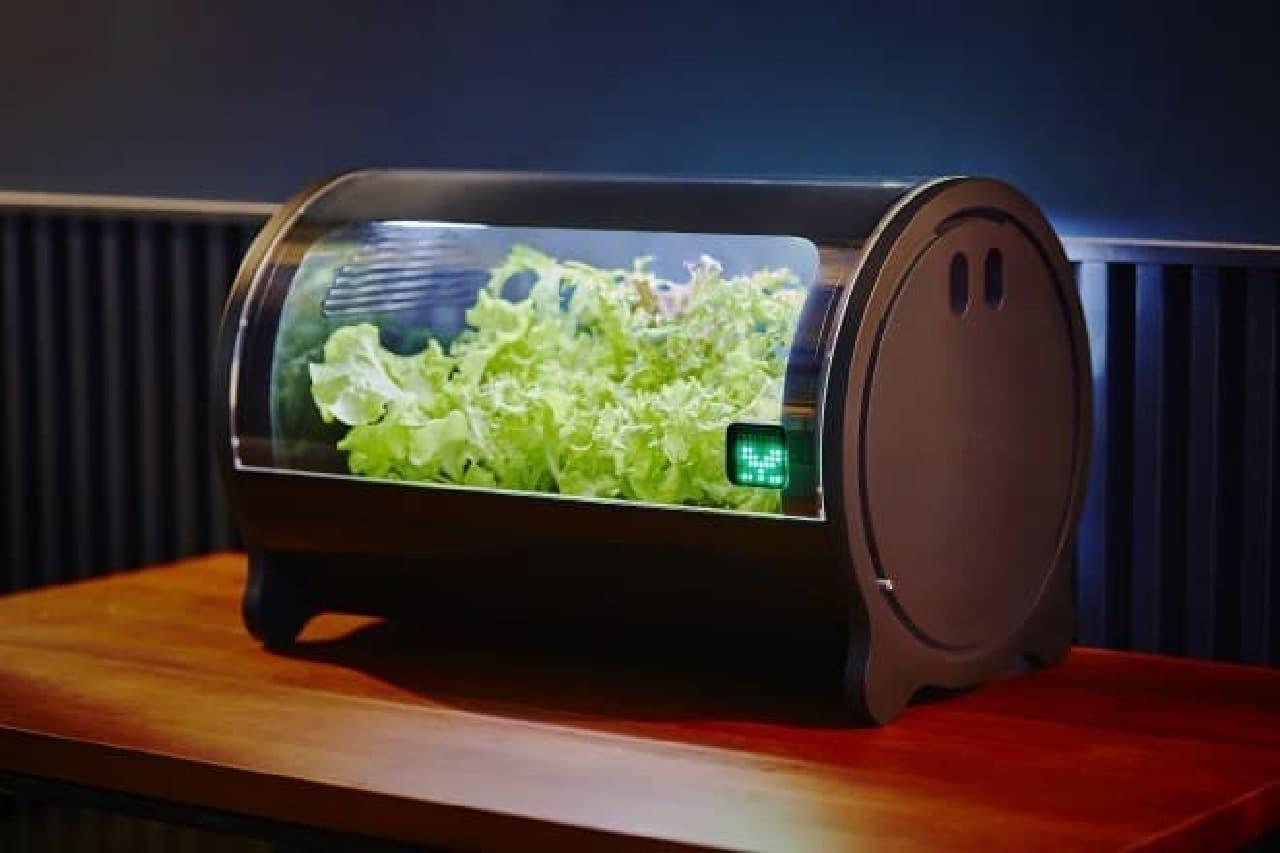 IoT水耕栽培機のfoop Pro