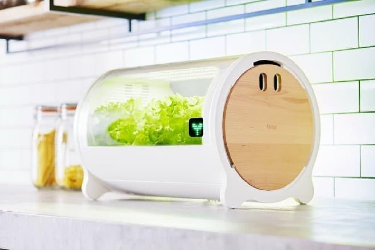 IoT水耕栽培機のfoop