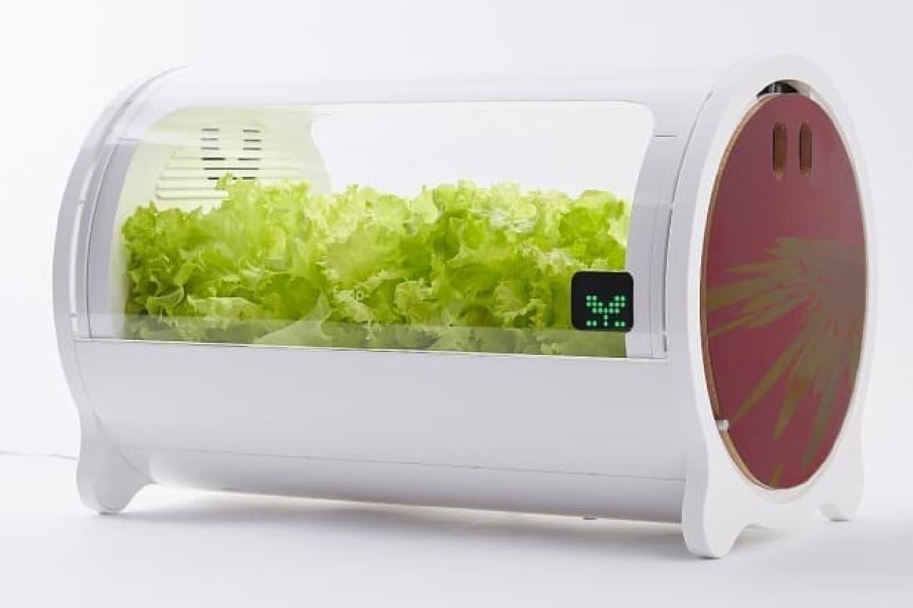 IoT水耕栽培機のfoop Premium