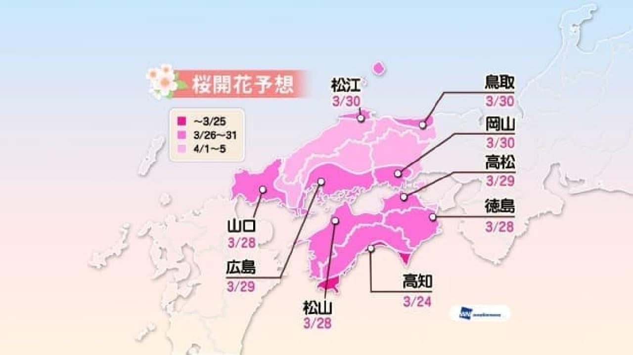 ウェザーニューズが「第三回桜開花予想」を公表