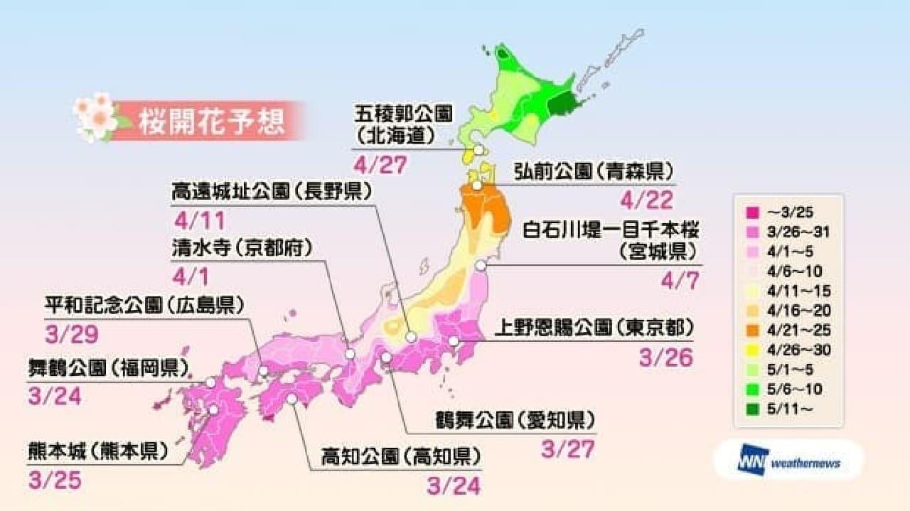 ウェザーニューズが「第四回桜開花予想」を発表