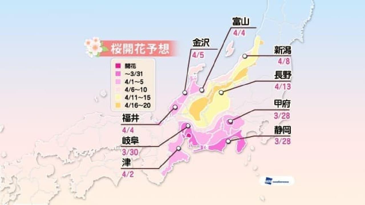 ウェザーニューズが「第五回桜開花予想」を発表