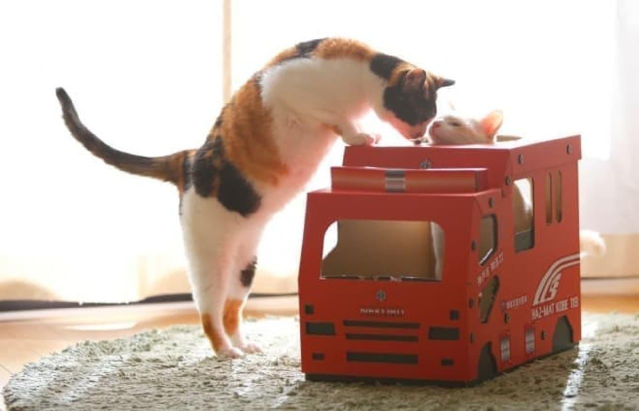 特殊災害対策車デザインの「猫さんのつめとぎ消防車『HAZ-MAT KOBE119』」