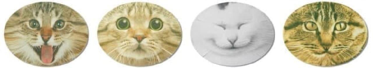 なりきりフェイスパック猫 パッケージ