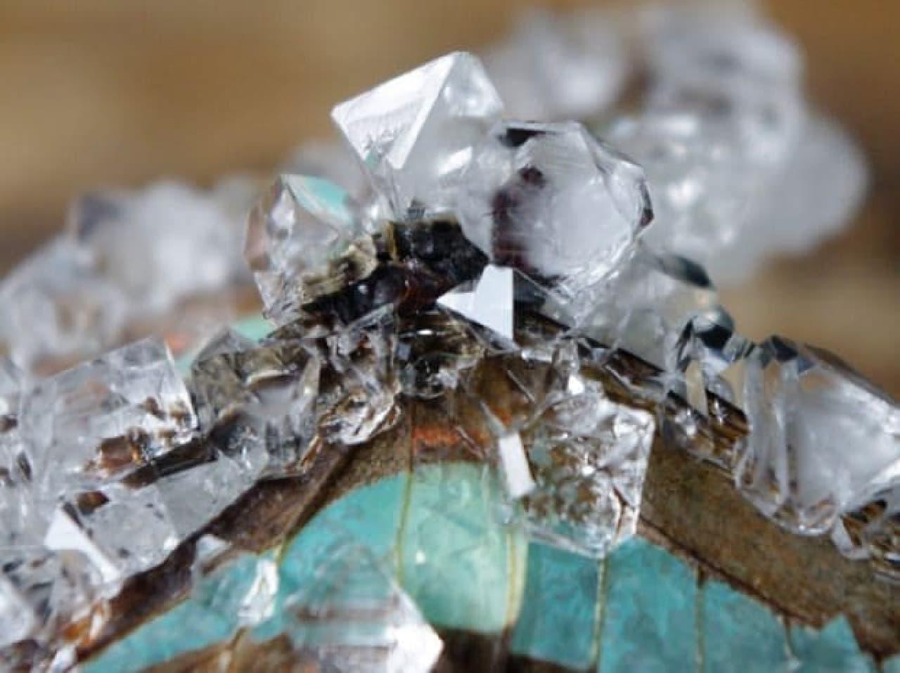昆虫結晶標本の写真