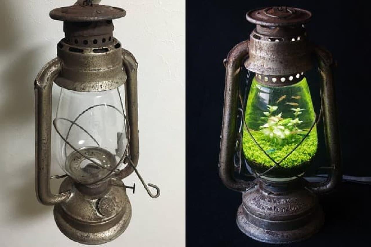 水槽ランプのイメージ