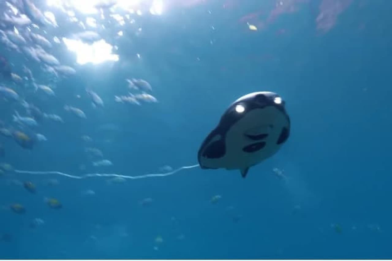 水中で魚を釣るドローン