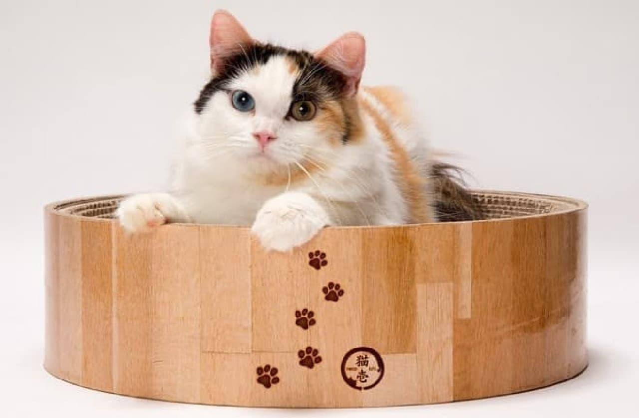 ネコが入って落ち着くのに十分なサイズ