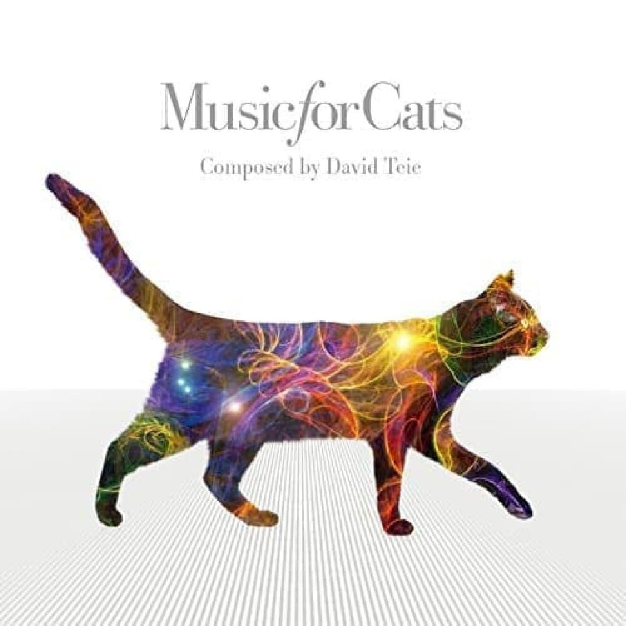 ネコのための音楽「Music for Cats」、セカンドアルバム制作へ!