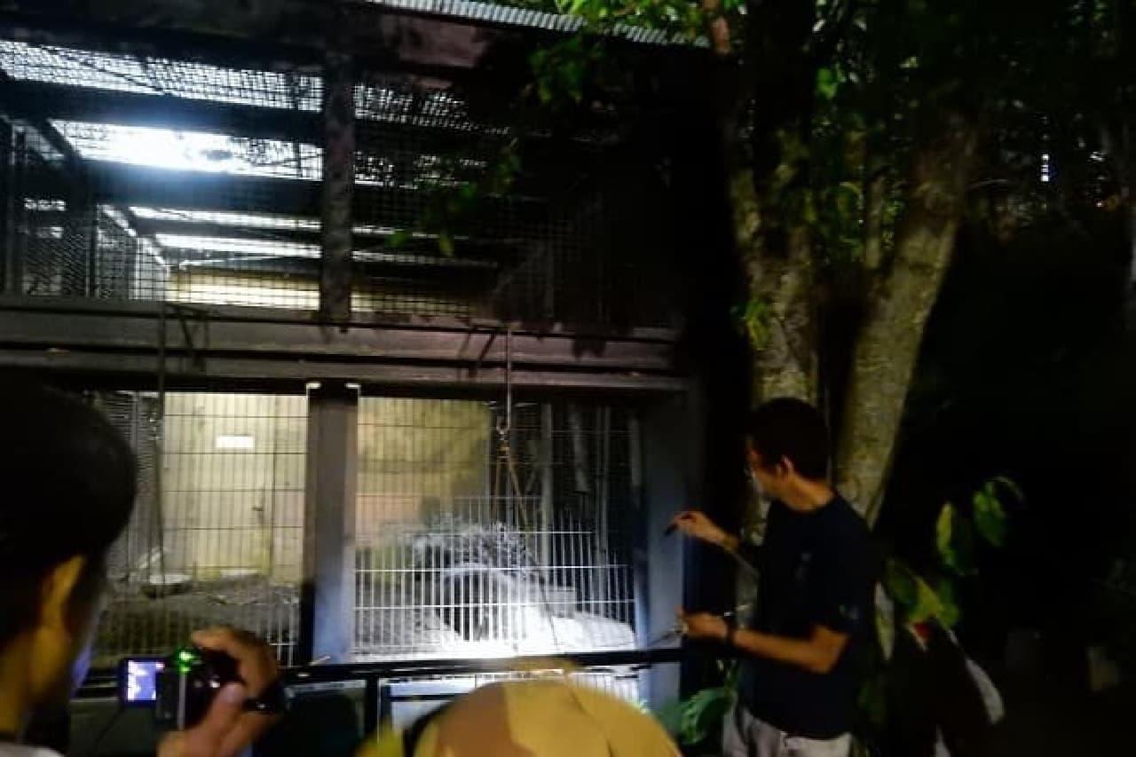 旭山動物園のイメージ