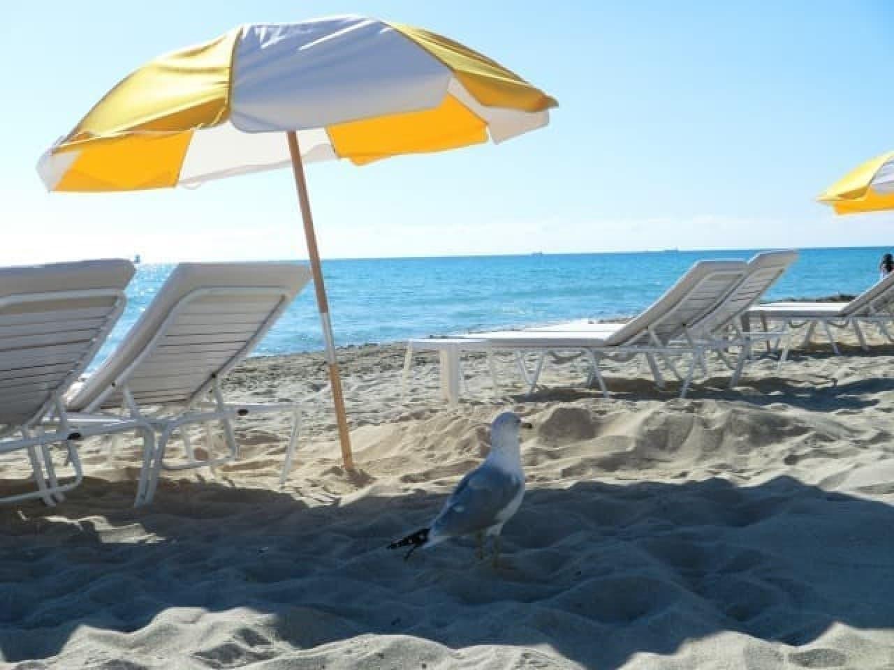 日焼けを防ぐ折り畳みビーチシェード「Shader」