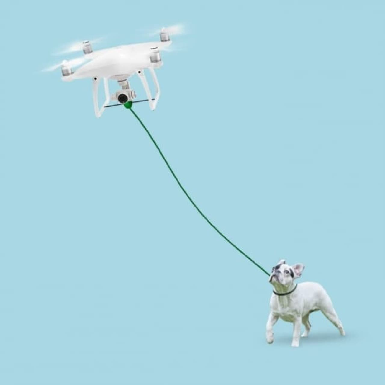 犬の散歩用ドローン「Proflight Walkies Dog Drone」