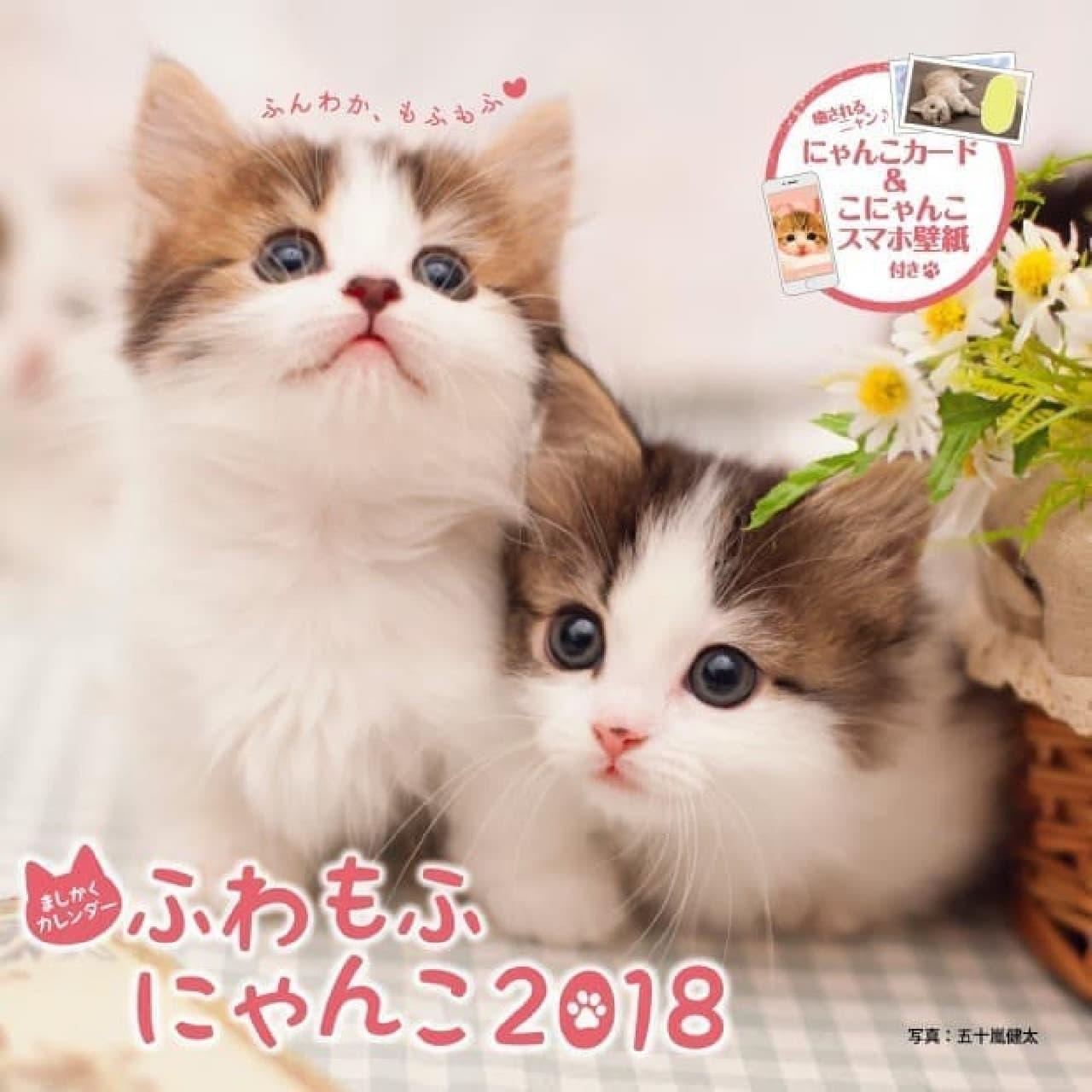 ましかくカレンダーふわもふにゃんこ2018