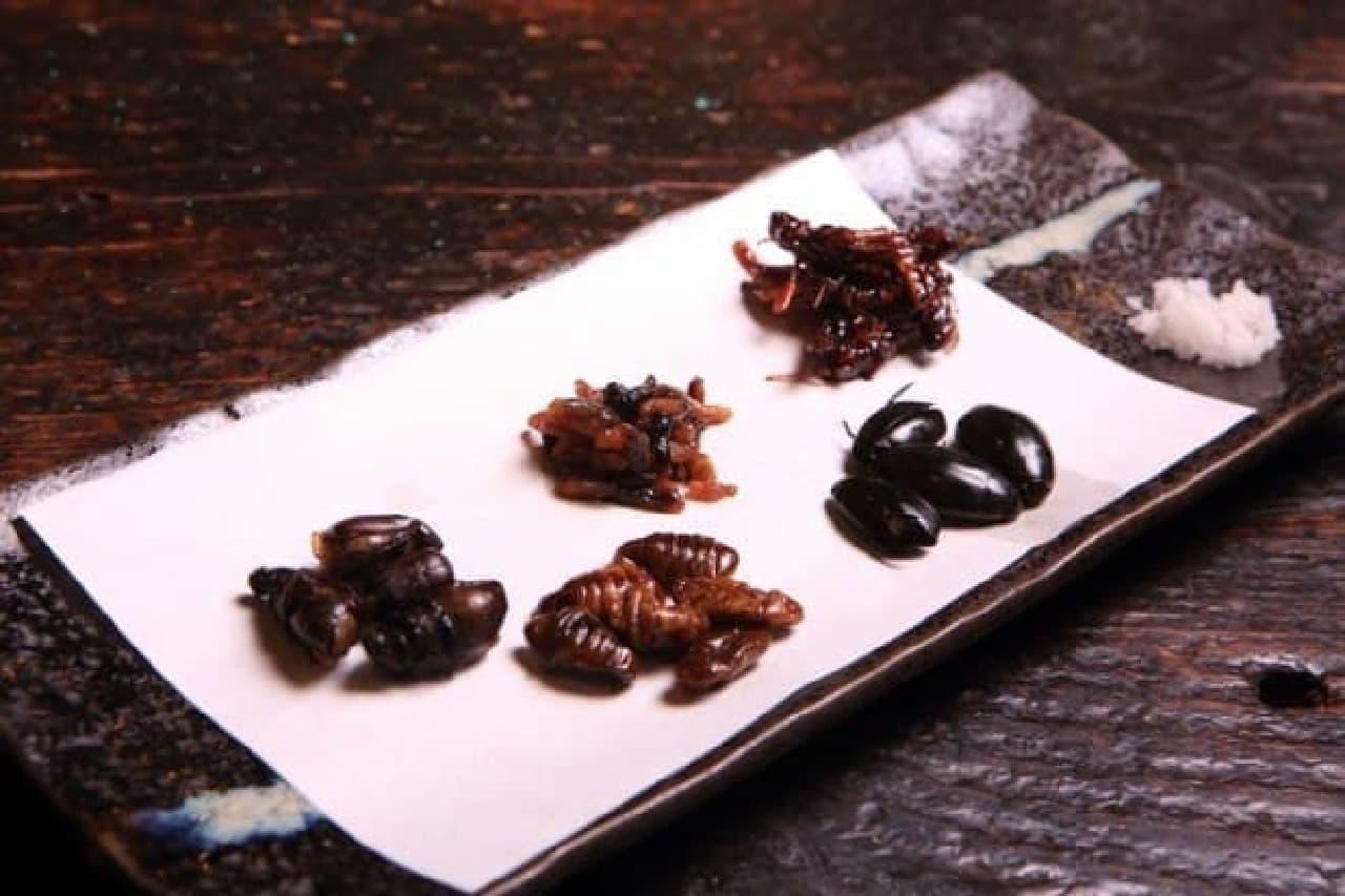 昆虫食のイメージ